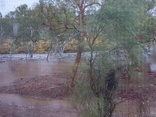 Bamboo Creek - Flooding River 01